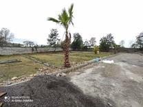 فروش زمین با جواز ساخت رویان 320 متری  در شیپور