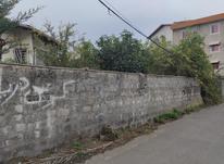 زمین مسکونی 600 متر در پسکلایه کوچک تنکابن در شیپور-عکس کوچک