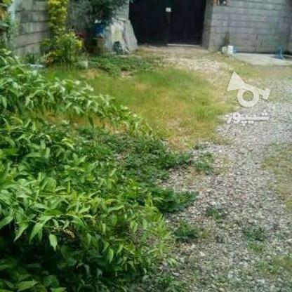 زمین در بافت زیر قیمت منطقه در گروه خرید و فروش املاک در مازندران در شیپور-عکس1