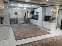 175 متر اکازیون البرز در شیپور-عکس کوچک