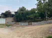فروش زمین مسکونی 200 متر در قائم شهر در شیپور-عکس کوچک