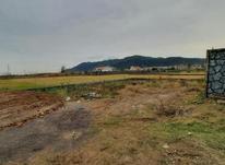 فروش زمین 240 متر در لاهیجان در شیپور-عکس کوچک