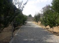 باغ 300 متر در شهریار در شیپور-عکس کوچک