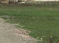 زمین در بافت زیر قیمت  در شیپور-عکس کوچک