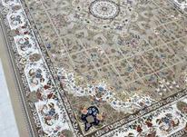 فرش 1200 شانه برجسته گرشاسب/خرید امن در شیپور-عکس کوچک