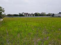 فروش زمین 4000متری سند دار داخل بافت در محمود آباد  در شیپور-عکس کوچک
