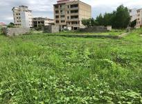 فروش زمین شهری 244 متری سند تک برگ در شیپور-عکس کوچک