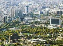 کلنگی 420 متر بر 12 فلکه اول تهرانپارس در شیپور-عکس کوچک