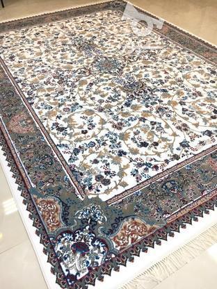 فرش پرنسس کیفیت عالی/خرید امن در گروه خرید و فروش لوازم خانگی در مازندران در شیپور-عکس5