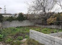 فروش زمین 200 متر در کوچه مهتاب خ تهران قائم شهر در شیپور-عکس کوچک