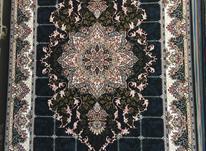 فروش  فرش زیبا  در شیپور-عکس کوچک