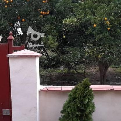 فروش ویلا 200 متر در آمل در گروه خرید و فروش املاک در مازندران در شیپور-عکس16