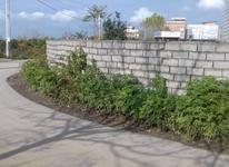 فروش زمین مسکونی تجاری117 متر در بلوار ولیعصر کمریندی  در شیپور-عکس کوچک