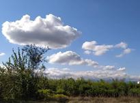 8000 متر زمین مسکونی با موقعیت عالی در فومن  در شیپور-عکس کوچک
