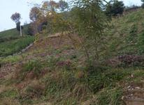 550 متر زمین مسکونی در کتشال در شیپور-عکس کوچک