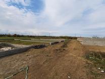 زمین 200 متری ساحلی در منطقه توریستی کرفون در شیپور