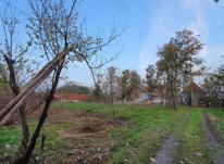 360 متر زمین مسکونی در بارکوسرا  در شیپور-عکس کوچک