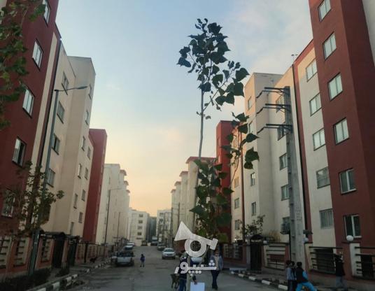 فروش آپارتمان 105 متر در فاز 8 پردیس (معروف به دره بهشت) در گروه خرید و فروش املاک در تهران در شیپور-عکس3