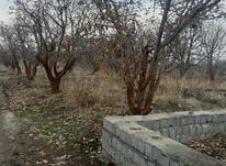 فروش زمین کشاورزی 200 متر در دماوند جابان در شیپور-عکس کوچک