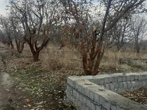 فروش زمین کشاورزی 200 متر در دماوند جابان در شیپور