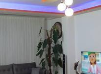فروش آپارتمان 86 متر در مرکز شهر لنگرود در شیپور-عکس کوچک