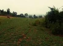 فروش زمین 300000 متر در املش در شیپور-عکس کوچک