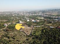زمین2500 متری رو تپه با ویوی عالی در شیپور-عکس کوچک