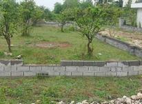 چالوس رادیو دریا فروش زمین 440 متر با سند در شیپور-عکس کوچک