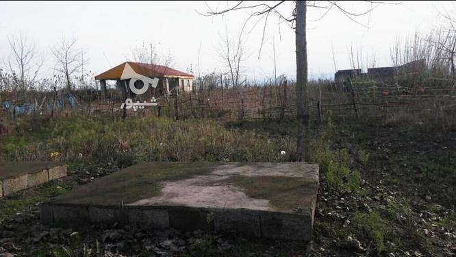 فروش زمین ساحلی مسکونی 10000 متر در آستانه اشرفیه در گروه خرید و فروش املاک در گیلان در شیپور-عکس2