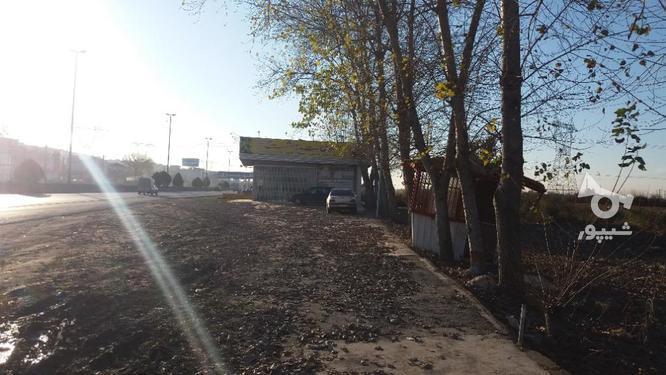 342 متر زمین تجاری/بر اصلی روبروی حاج حسن  در گروه خرید و فروش املاک در مازندران در شیپور-عکس3