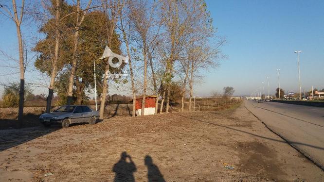 342 متر زمین تجاری/بر اصلی روبروی حاج حسن  در گروه خرید و فروش املاک در مازندران در شیپور-عکس4
