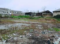 فروش زمین مسکونی 850 متر در صومعه سرا در شیپور-عکس کوچک
