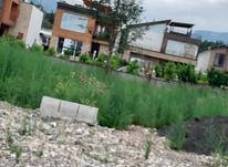 فروش زمین مسکونی۴۶۵ متر در رویان در شیپور-عکس کوچک