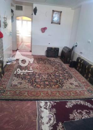 فروش آپارتمان 94 متر در جهرم در گروه خرید و فروش املاک در فارس در شیپور-عکس7