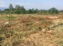 فروش زمین مسکونی 310 متر در سلمان شهر در شیپور-عکس کوچک