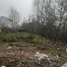 فروش زمین مسکونی 344 متر در آستانه اشرفیه