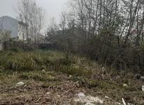 فروش زمین مسکونی 344 متر در آستانه اشرفیه در شیپور-عکس کوچک