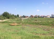 فروش زمین  210 متر در آمل در شیپور-عکس کوچک