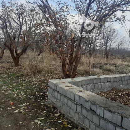 فروش زمین کشاورزی 200 متر در دماوند جابان در گروه خرید و فروش املاک در تهران در شیپور-عکس2