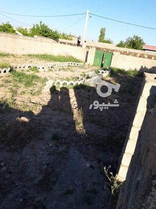 فروش زمین 520 متر در نظرآباد در گروه خرید و فروش املاک در البرز در شیپور-عکس4