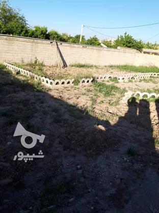 فروش زمین 520 متر در نظرآباد در گروه خرید و فروش املاک در البرز در شیپور-عکس2