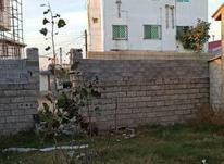 فروش زمین مسکونی 118 متر در بلوار بسیج بابلسر در شیپور-عکس کوچک