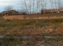 فروش زمین مسکونی شهری در رضوانشهر در شیپور-عکس کوچک