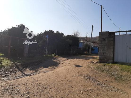 فروش زمین کشاورزی 4000 متری خارکش انتهای  بوستان 7  در گروه خرید و فروش املاک در مازندران در شیپور-عکس8