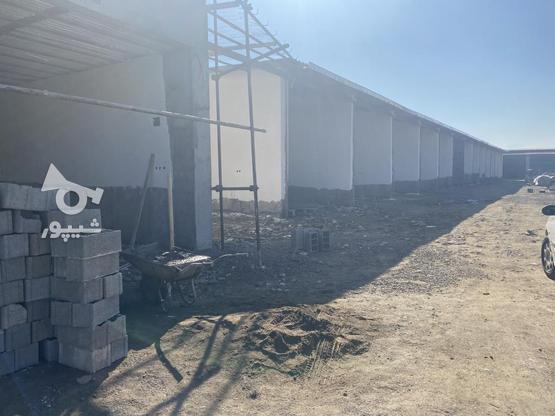 مغازه های نوساز از متراژ 50 متر الی 75 متر در گروه خرید و فروش املاک در مازندران در شیپور-عکس2