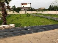 فروش زمین 298 متری شهرکی در سرخرود  در شیپور-عکس کوچک