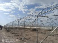 گلخانه سازی و ساخت گلخانه در شیپور-عکس کوچک