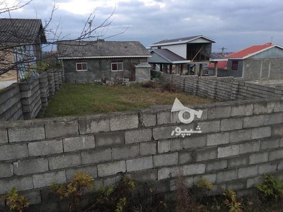 فروش زمین مسکونی 300 متر در رضوانشهر در گروه خرید و فروش املاک در گیلان در شیپور-عکس4