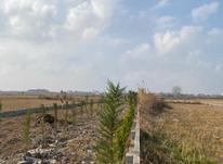 فروش زمین الحاق به بافت قیمت مناسب در شیپور-عکس کوچک