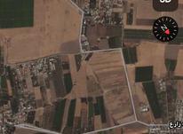 فروش زمین کشاورزی 1000 متر در نظرآباد حسن آباد در شیپور-عکس کوچک